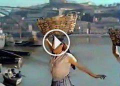 O Passarinho da Ribeira (1960)